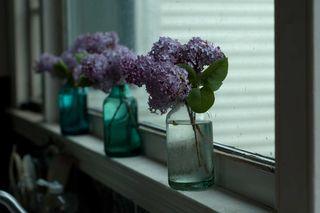 LilacsKitchen
